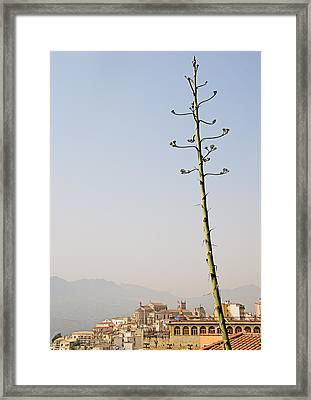 Monreale Sicily Framed Print by Philip Timmins