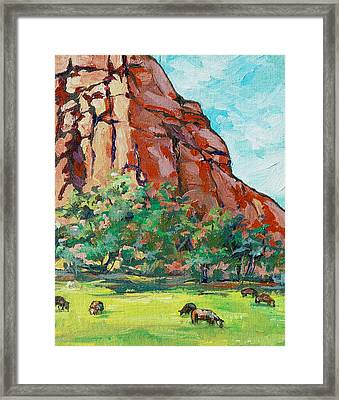 Moo Cow Framed Print by Sandy Tracey