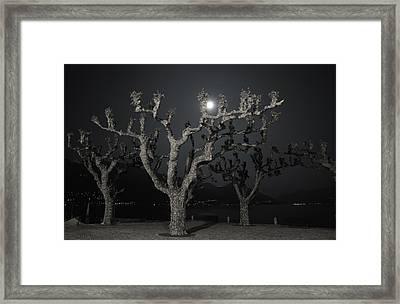 Moon Light Framed Print by Mats Silvan