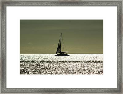 Moonlight Sail Framed Print by Rene Triay Photography