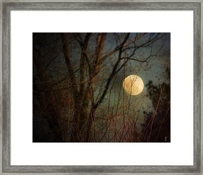 Moonrise Framed Print by Jai Johnson