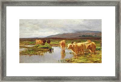 Moorlands And Mist Framed Print by Duncan McLaurin