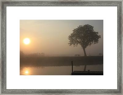 Morning Calm Framed Print by Linsey Williams