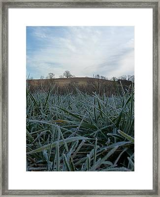 Morning Frost Framed Print by Felix Concepcion