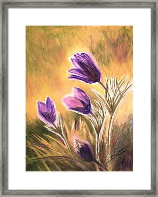 Morning II Framed Print by Shera Summer