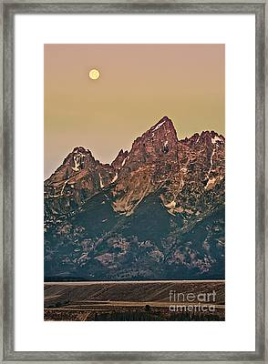 Morning Light Framed Print by Robert Bales