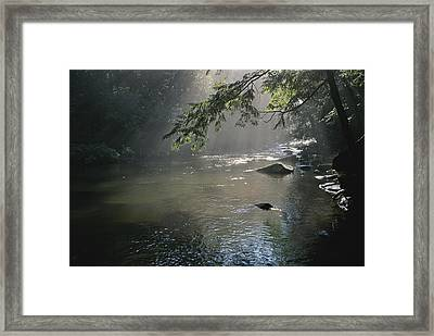 Morning Mist Lifts Off The Tellico Framed Print by Stephen Alvarez