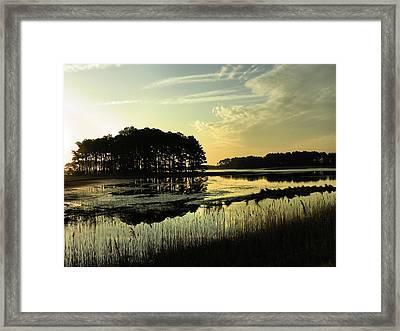 Morning On Assateague Island Framed Print by Steven Ainsworth