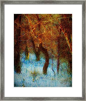 Morning Worship Framed Print by Mimulux patricia no