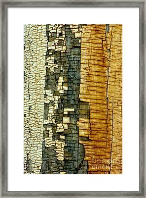 Mosaic Of Time Framed Print by Vicki Pelham