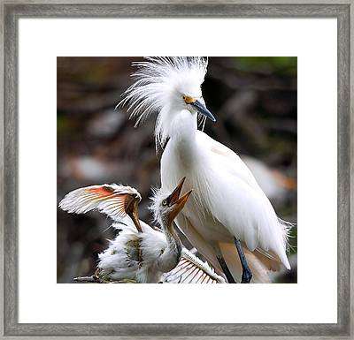 Mother And Child Framed Print by Kenneth Albin