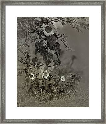 Mother And Child Reunion Framed Print by Susan Capuano