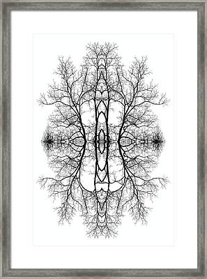 Mother Earth Framed Print by Debra and Dave Vanderlaan