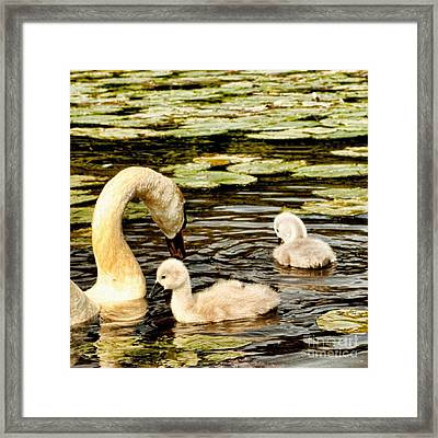 Mothers Love Framed Print by Isabella Abbie Shores