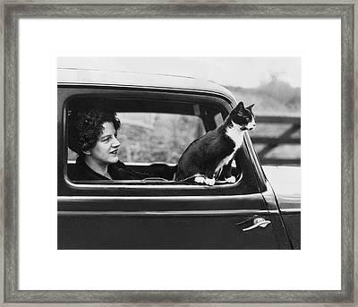 Motoring Cat Framed Print by Fox Photos