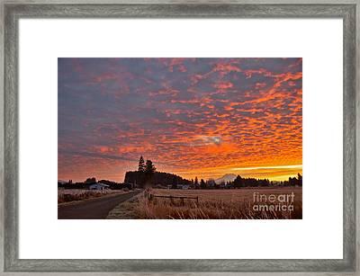 Mount Rainier Dawn Framed Print by Sean Griffin