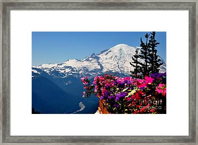 Mount Rainier Seen From Crystal Mountain Summit  3 Framed Print by Tanya  Searcy