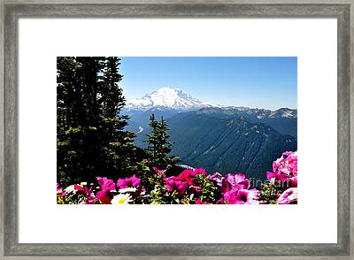 Mount Rainier Seen From Crystal Mountain Summit  5 Framed Print by Tanya  Searcy