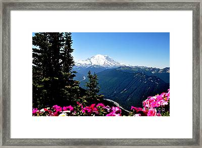 Mount Rainier Seen From Crystal Mountain Summit  6 Framed Print by Tanya  Searcy