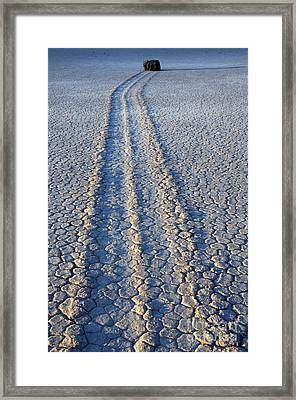 Moving And Grooving Framed Print by Bob Christopher