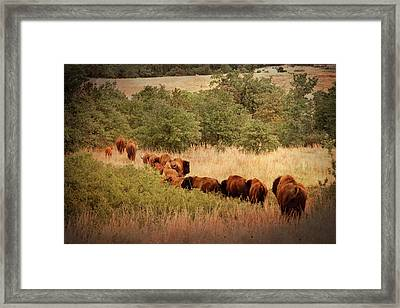 Moving On Framed Print by Tamyra Ayles