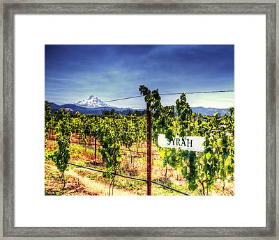 Mt Hood Winery Framed Print by Vicki Jauron