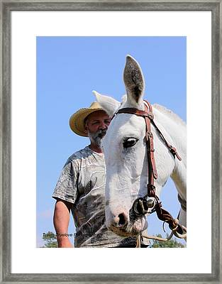 Mules At Benson Mule Day Framed Print by Travis Truelove