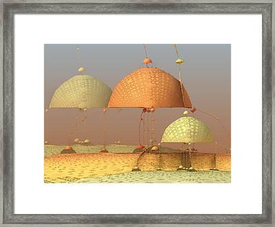Muncher 4 Framed Print by Pam Blackstone