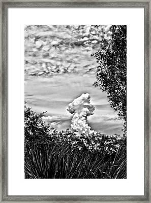 Mushroom - Bw Framed Print by Nicholas Evans