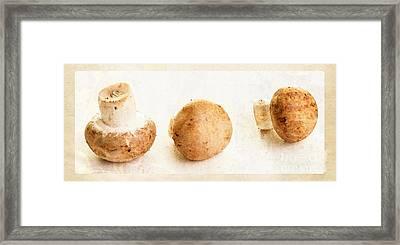 Mushroom Trio Framed Print by Edward Fielding