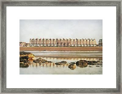 Mussel Encrusted Rocks Framed Print by larigan - Patricia Hamilton
