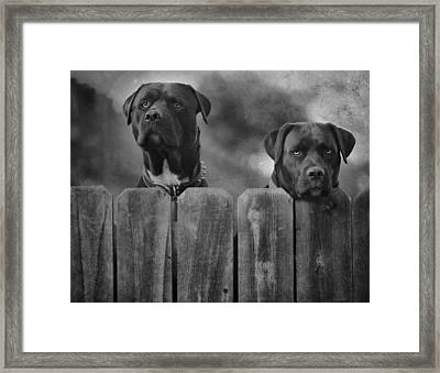 Mutt And Jeff 2 Framed Print by Larry Marshall