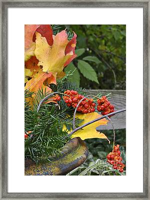 My Bittersweet Fall Framed Print by Mary Machare