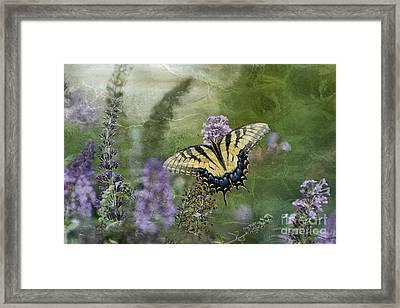 My Mothers Garden - D007041 Framed Print by Daniel Dempster