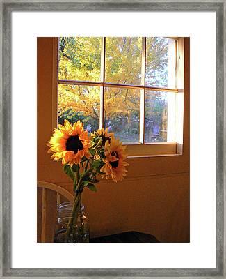My Sisters Kitchen Window Framed Print by Pamela Patch