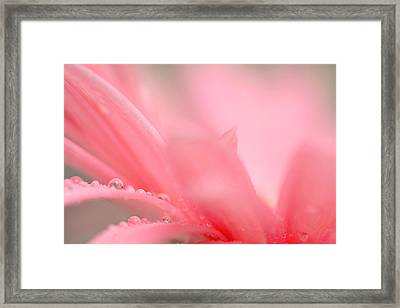 My Wish... Framed Print by Melanie Moraga