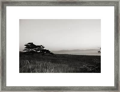 Mysterious Framed Print by Tracie Skiles