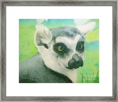 Mystic Seer Of Madagascar Framed Print by Lisa Urankar