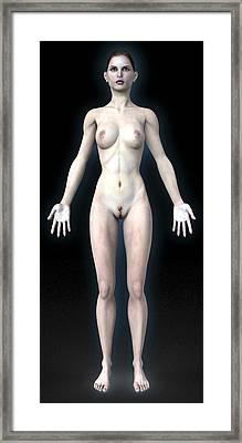 Naked Woman Framed Print by Christian Darkin