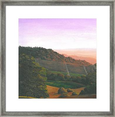 Napa Orchards Framed Print by DC Decker