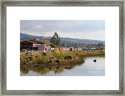Napa River In Napa California Wine Country Framed Print by Wingsdomain Art and Photography