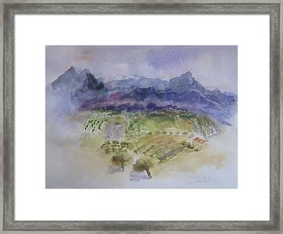 Napa Valley Ll Framed Print by Carolyn Zbavitel