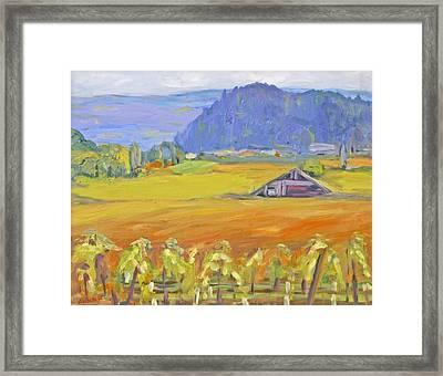 Napa Valley Mountains Framed Print by Barbara Anna Knauf
