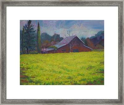 Napa Valley Mustards And Red Barn Framed Print by Deirdre Shibano