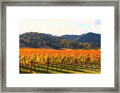 Napa Valley Vineyard In Autumn Colors Framed Print by Wingsdomain Art and Photography