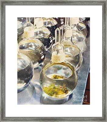 Nasa Experiment Framed Print by Science Source