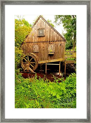 Nathaniel Thomas Mill Framed Print by Catherine Reusch  Daley