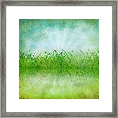 Nature And Grass On Paper Framed Print by Setsiri Silapasuwanchai