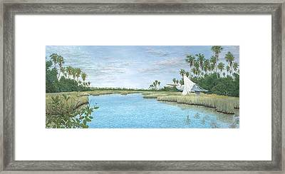Nature Coast Framed Print by Kevin Brant