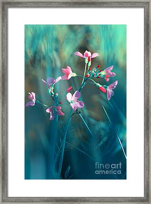 Nature Fantasy Framed Print by Tanja Riedel